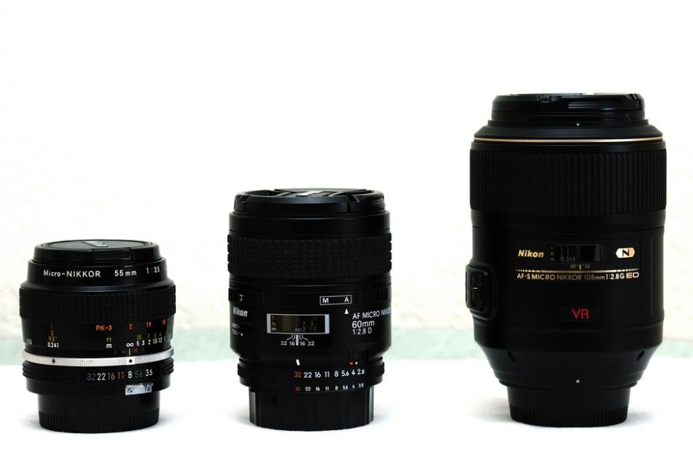 Shooting closeups - Extension tubes and bellows (1/6)